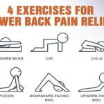 4 Exercises For Lower-Back Pain Relief