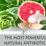 The Most Powerful Natural Antibiotic. Kills Any Infection In The Body