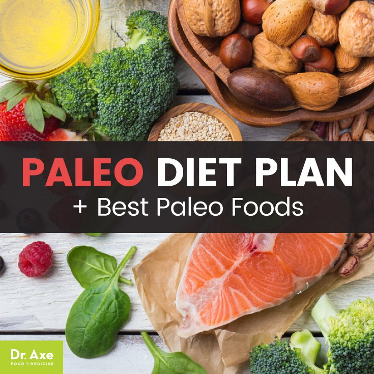 Paleo Diet Plan, Best Paleo Foods + Paleo Diet Recipes