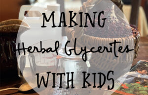 Natural Roots zine [Herbal Rootlets]: No. 119 - Making Natural Glycerites with Youngsters