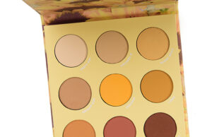 ColourPop Lil' Ray of Sunshine Eyeshadow Palette Assessment & Swatches
