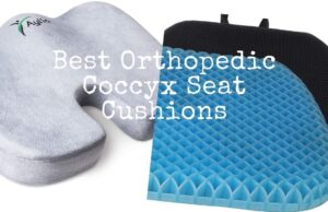 Eight Greatest Orthopedic Coccyx Seat Cushions: Overview 2020