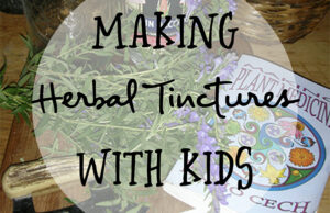 Natural Roots zine [Herbal Rootlets]: No. 118 - Making Natural Tinctures with Children