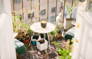 Develop an Eco-Pleasant Balcony or Rooftop Meals Backyard