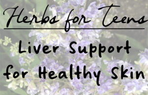 Natural Roots zine [Herbal Rootlets]: No. 121 - Herbs for Teenagers: Liver Assist for Wholesome Pores and skin