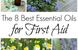 Eight Finest Important Oils for First Support : Inexperienced Path Herb Faculty