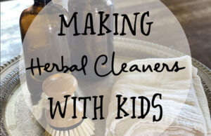 Natural Roots zine [Herbal Rootlets]: No. 115 - Making Natural Cleaners with Children