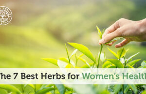 The 7 Greatest Herbs for Girls's Well being
