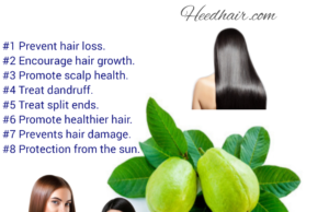 Guava Leaves Hair Loss Therapy, 9 Wonderful Advantages Of Guava Leaves For Hair Development